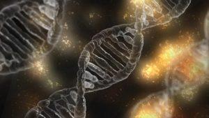 自閉症與遺傳