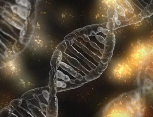 自閉症與遺傳的關係