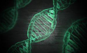 自閉症的遺傳基因